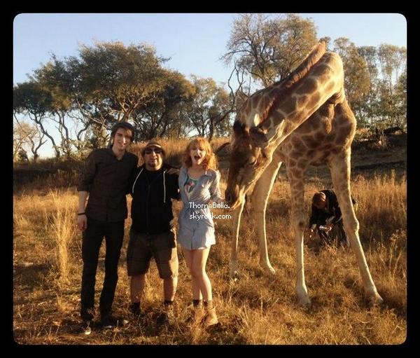Nouvelle photo twitter de Bella + tournage de Blended du 15 juin 2013.